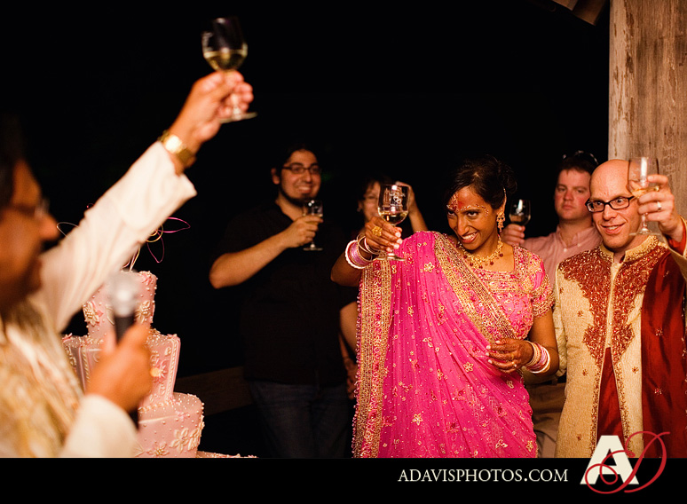 Indian American Wedding Fort Worth Botanical Gardens by Dallas Wedding Photographer Allison Davis Photography 72 Pia & Kent: Wedding at the Japanese Gardens in Fort Worth {Part 2}