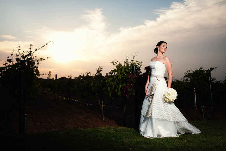 bridal portraits at Delaney Vineyards with off camera lighting by Allison Davis Photography
