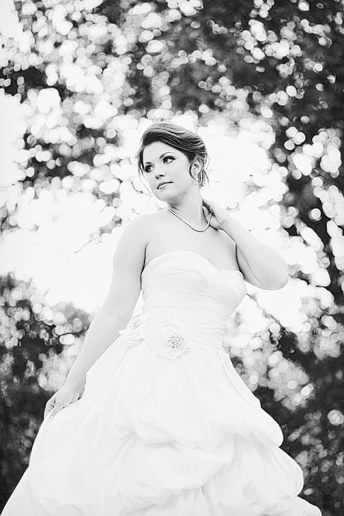 elegant bridal portrait by Dallas wedding photographer Allison Davis Photography