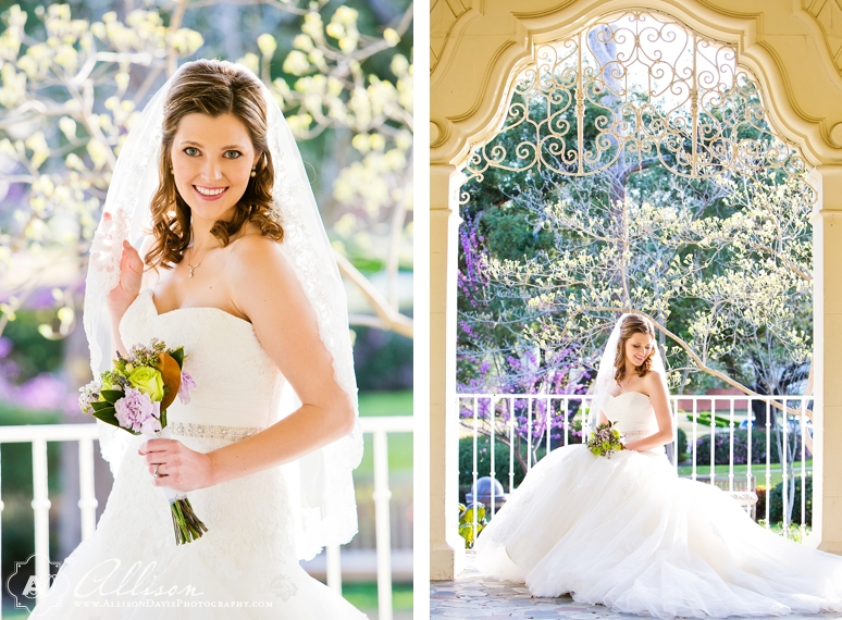 Amanda Dallas Bridal Portraits at Lakeside Park byAllisonDavisPhotography 018 <span>Amanda:</span><br/>Bridal Portraits at Lakeside Park & Versailles Park