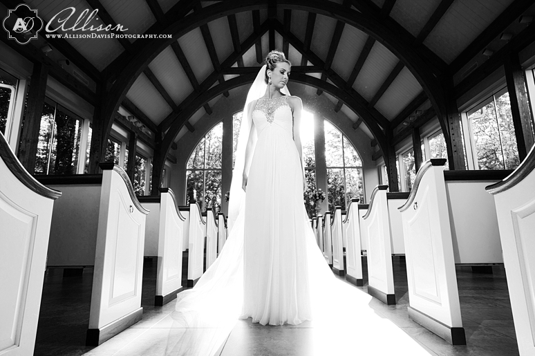 Loren Bridal Portraits at Ashton Gardens AllisonDavisPhotography 007 <span>Loren:</span><br/>Bridal Portraits at Ashton Gardens