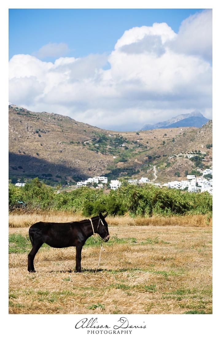 Landscape_Travel_Photography_Naxos_Greek_Islands_Allison_Davis_Photography_02